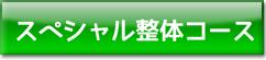 スペシャル整体コース